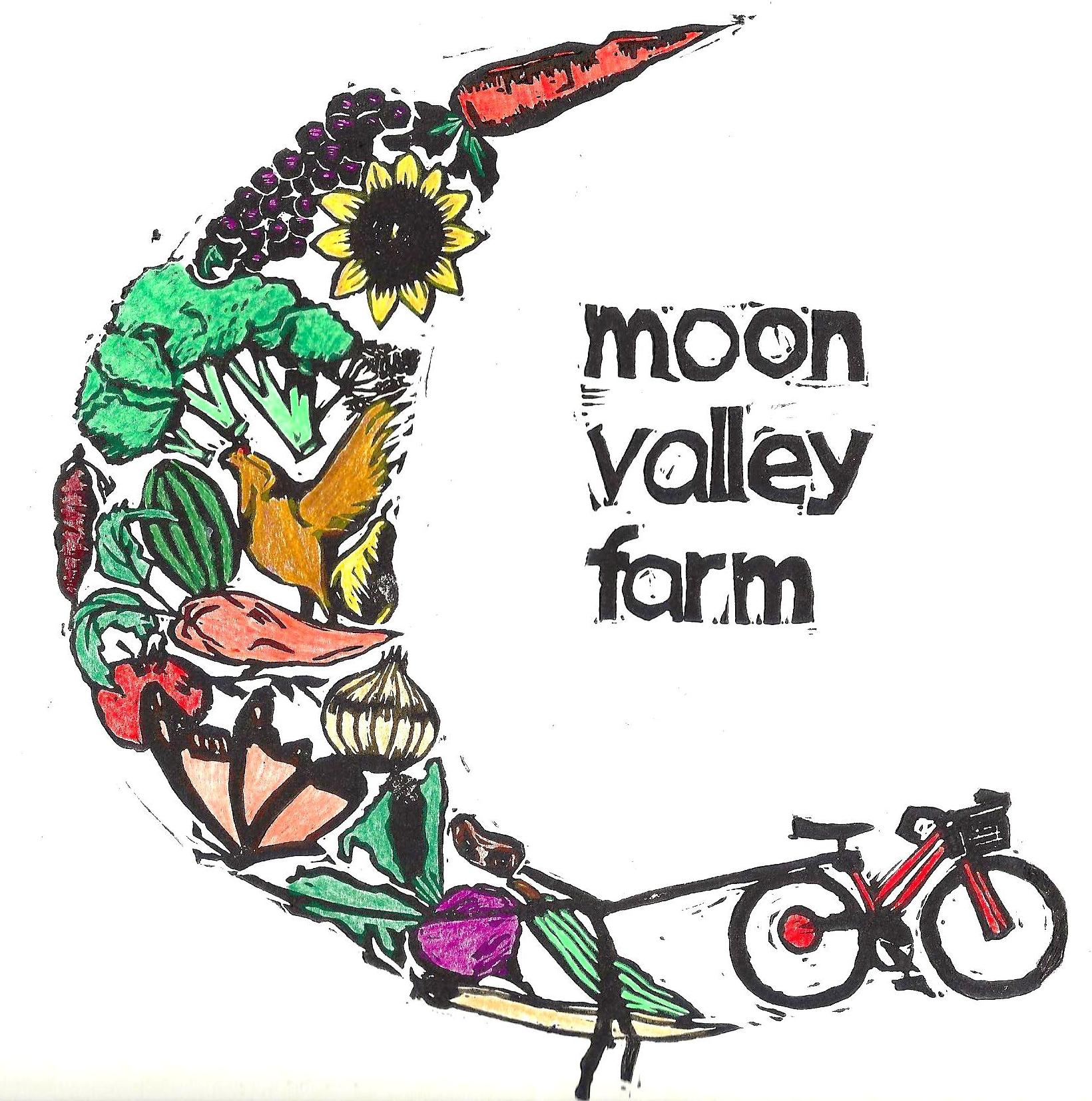 Image result for moon valley farm